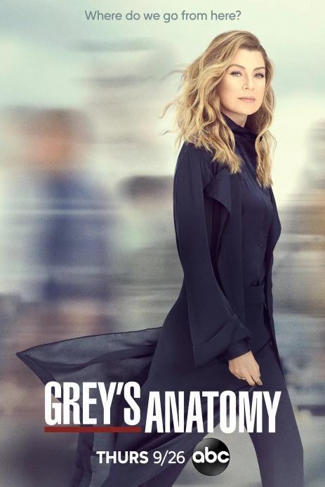 实习医生格蕾 1-17季 Grey's Anatomy