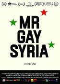 叙利亚同志先生